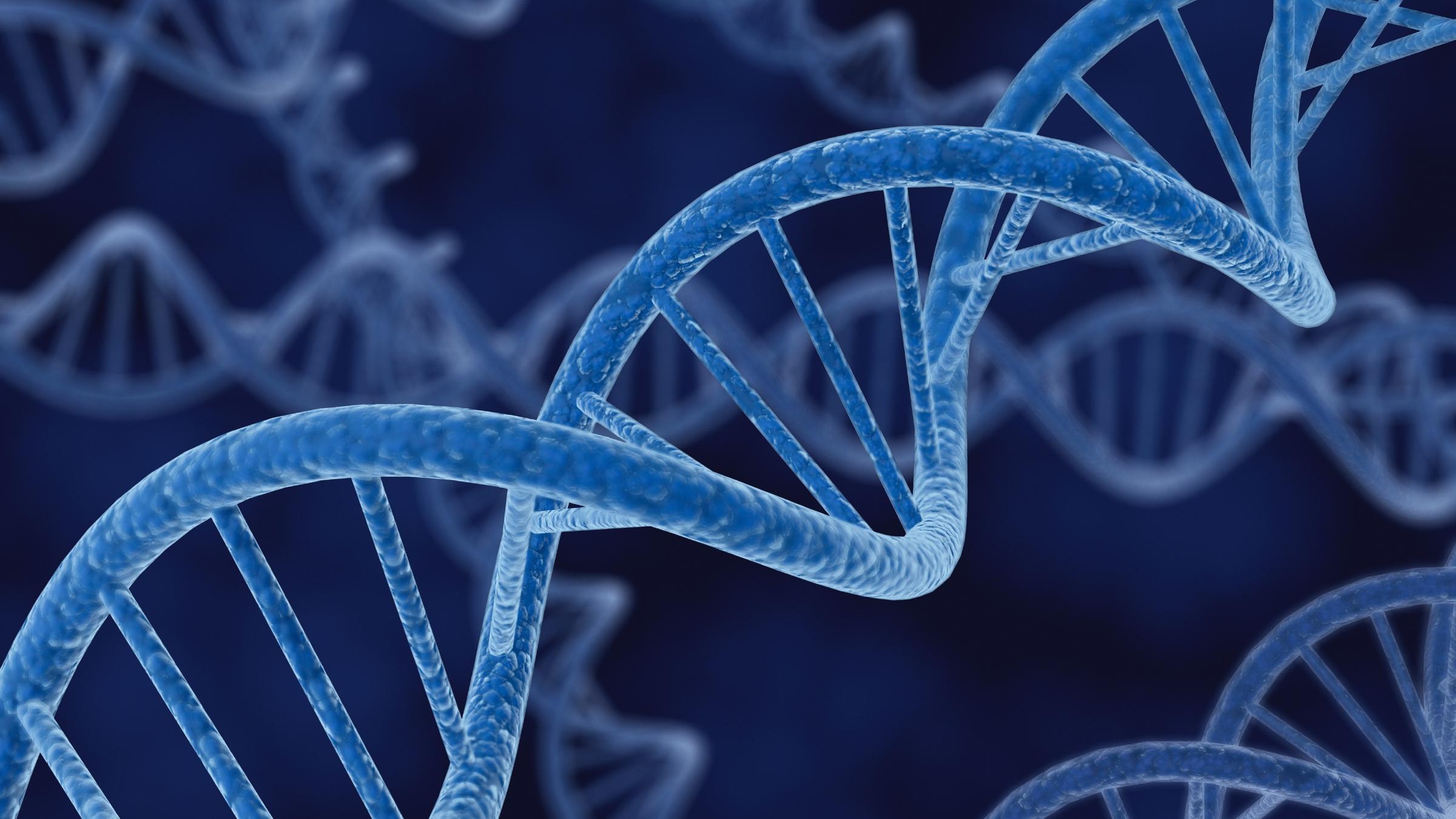 DNA AMGEN